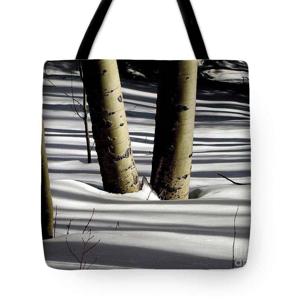 Shadows Tote Bag featuring the photograph Aspen Shadows by Carol Milisen