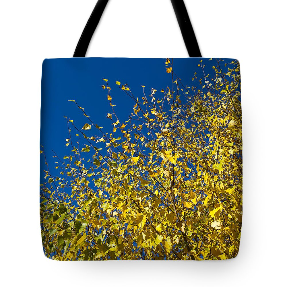 Autumn Tote Bag featuring the photograph Autumn Blue Sky by David Pyatt