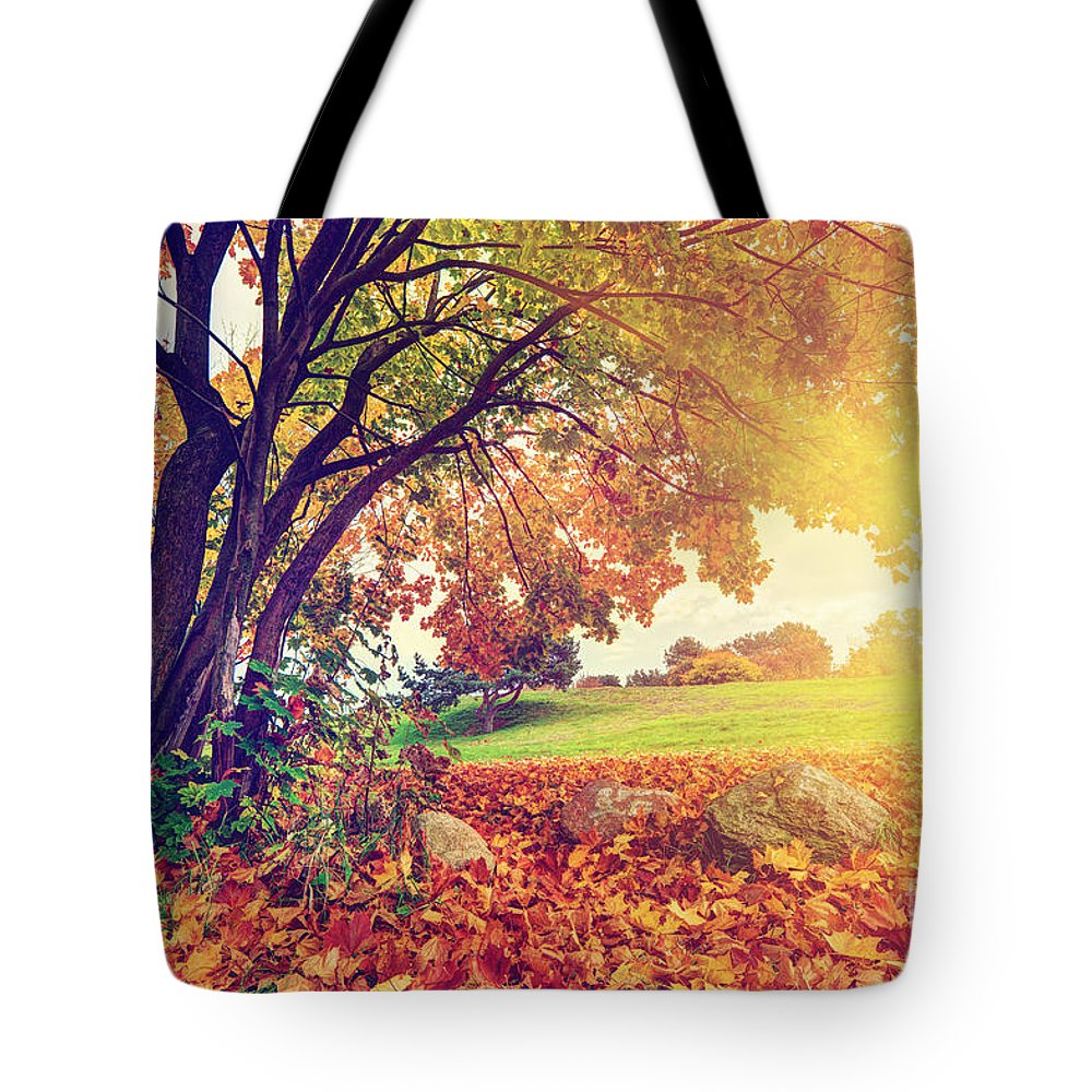 Autumn Tote Bag featuring the photograph Autumn Fall Park by Michal Bednarek