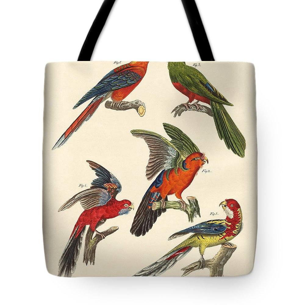 Bertuch Tote Bag featuring the drawing Beautiful Parrots by Splendid Art Prints