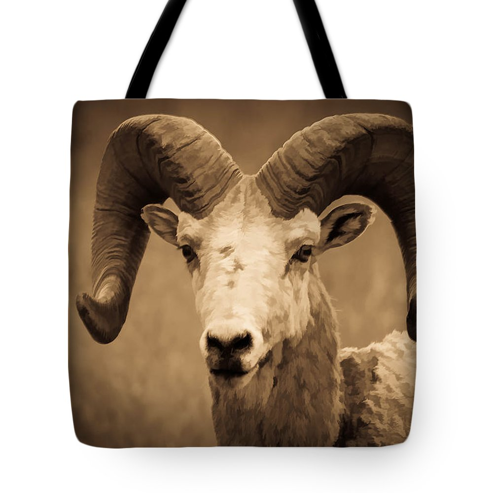 Bighorn Sheep Tote Bag featuring the photograph Big Horned Ram by Athena Mckinzie