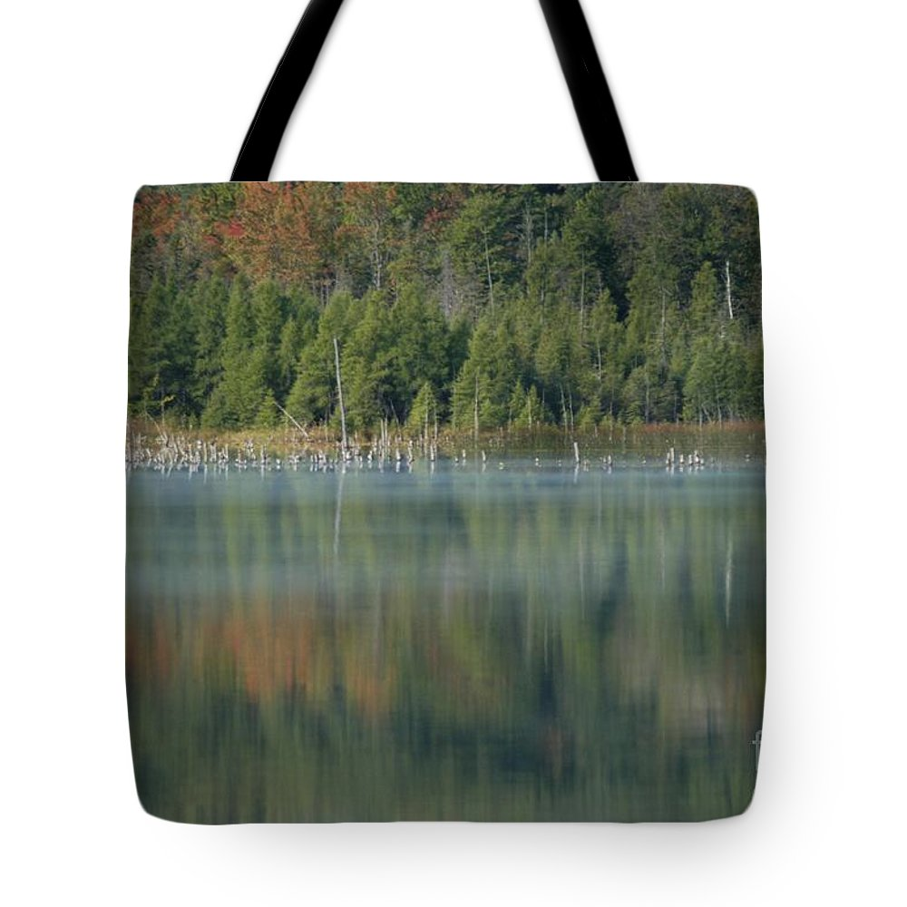 Atlanta Tote Bag featuring the photograph Birds by Joseph Yarbrough