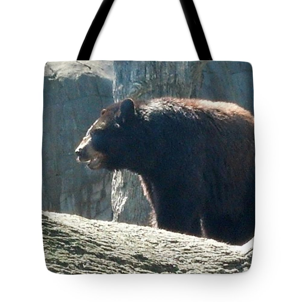 Black Bear Tote Bag featuring the photograph Black Bear by Janice Spivey