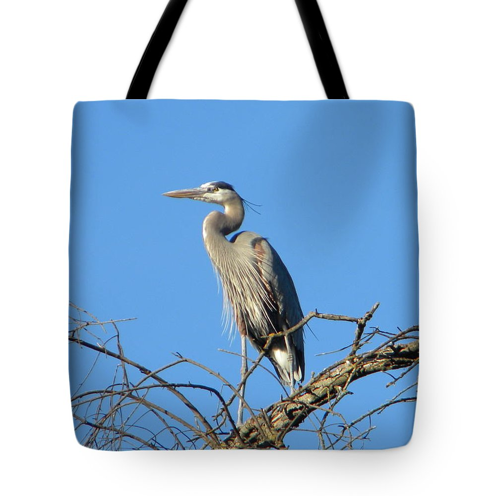 Great Blue Heron Tote Bag featuring the photograph Blue Heron by Eric Johansen