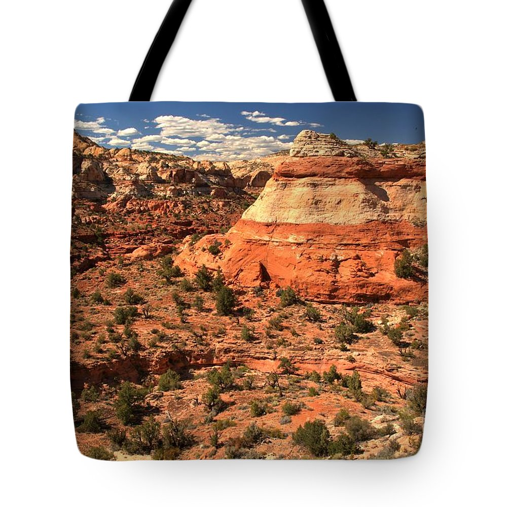 Calf Creek Falls Tote Bag featuring the photograph Calf Creek Canyon Red Rocks by Adam Jewell