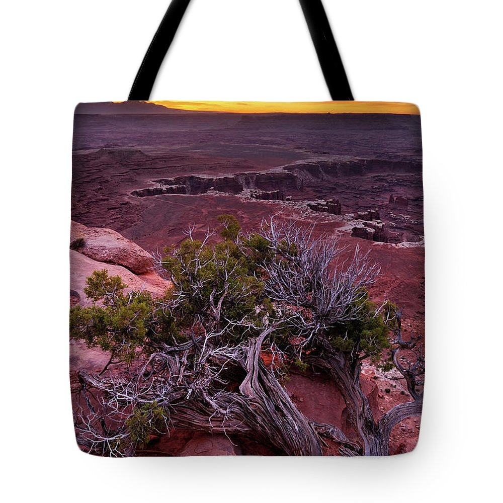 Scenics Tote Bag featuring the photograph Canyonlands Sunrise Landscape With Dry by Rezus