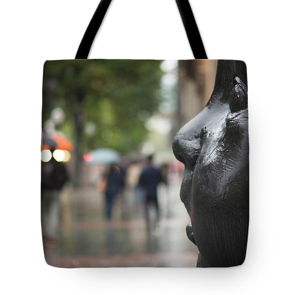 Photography Tote Bag featuring the photograph Carmen Awake Street Sculpture by Panoramic Images