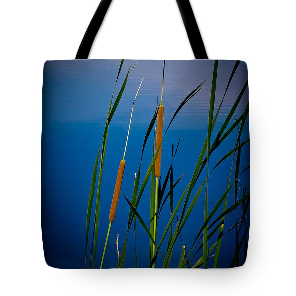 Day Tote Bag featuring the photograph Cattails by Doug Long