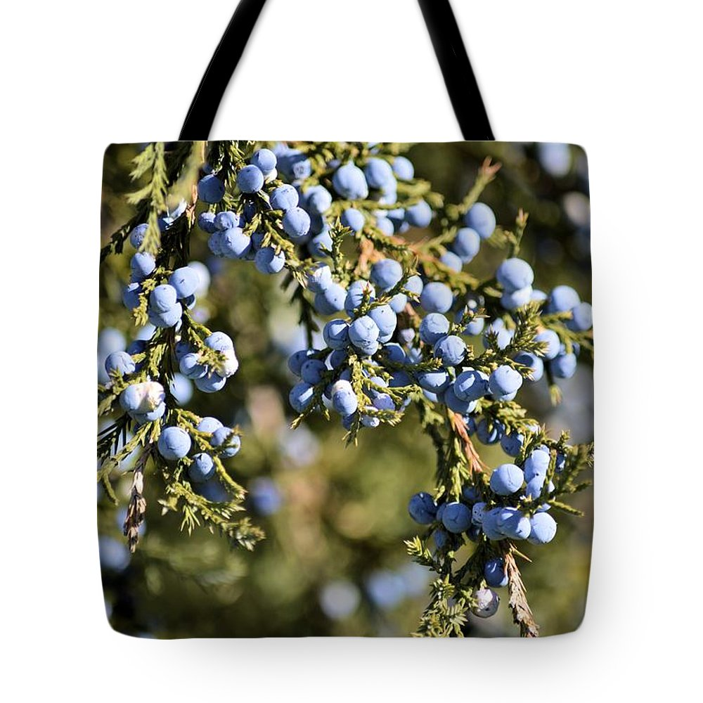 Cedar Tote Bag featuring the photograph Cedar Blue by Bonfire Photography