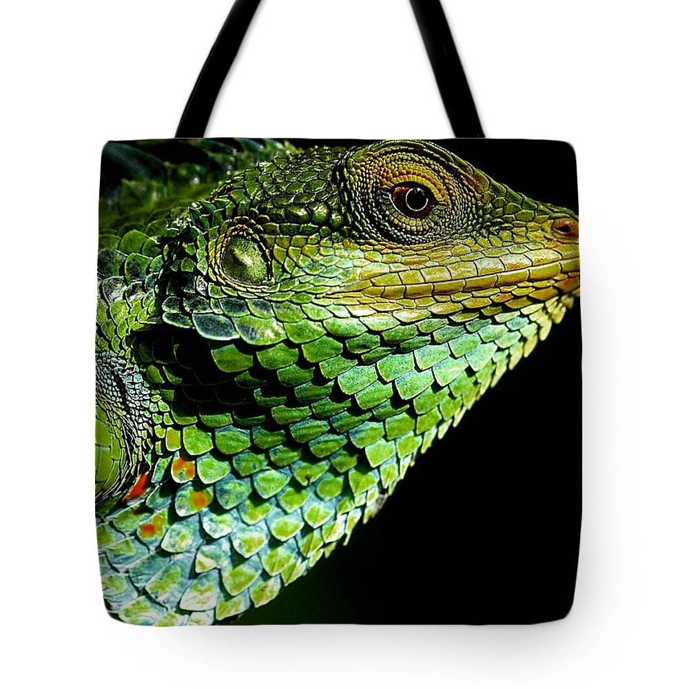 Animal Tote Bag featuring the photograph Chameleon by FL collection