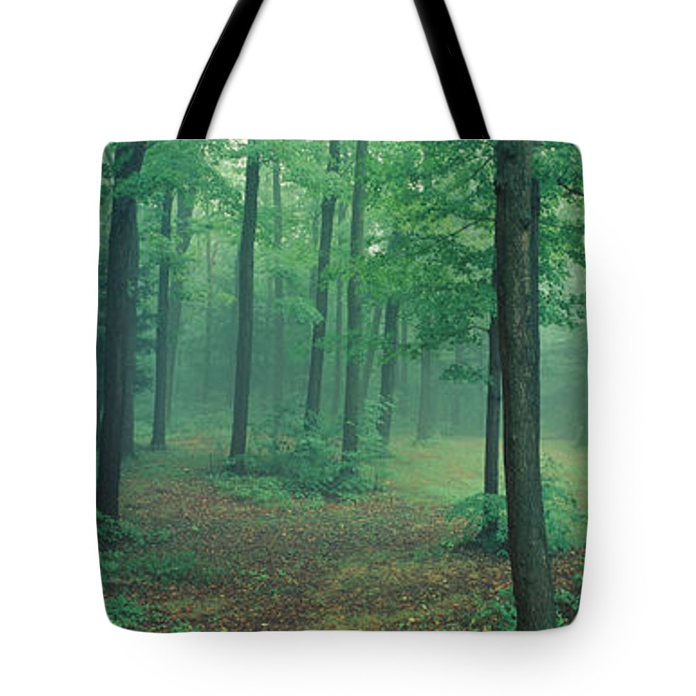 Chestnut Ridge Park Photographs Tote Bags