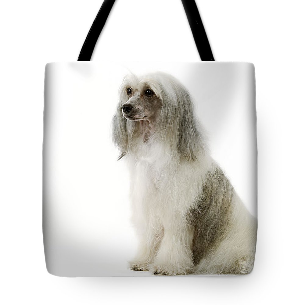 Chinese Crested Tote Bag featuring the photograph Chinese Crested Dog by Jean-Michel Labat