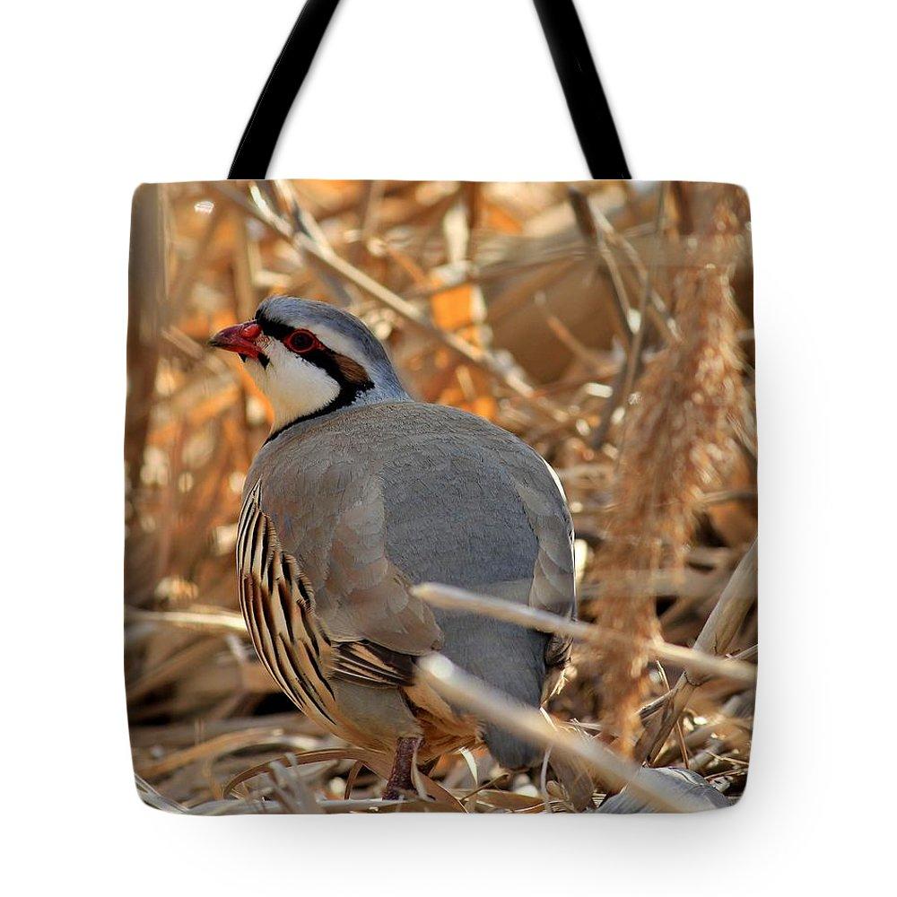 Chukar Tote Bag featuring the photograph Chukar Partridge by Roxie Crouch