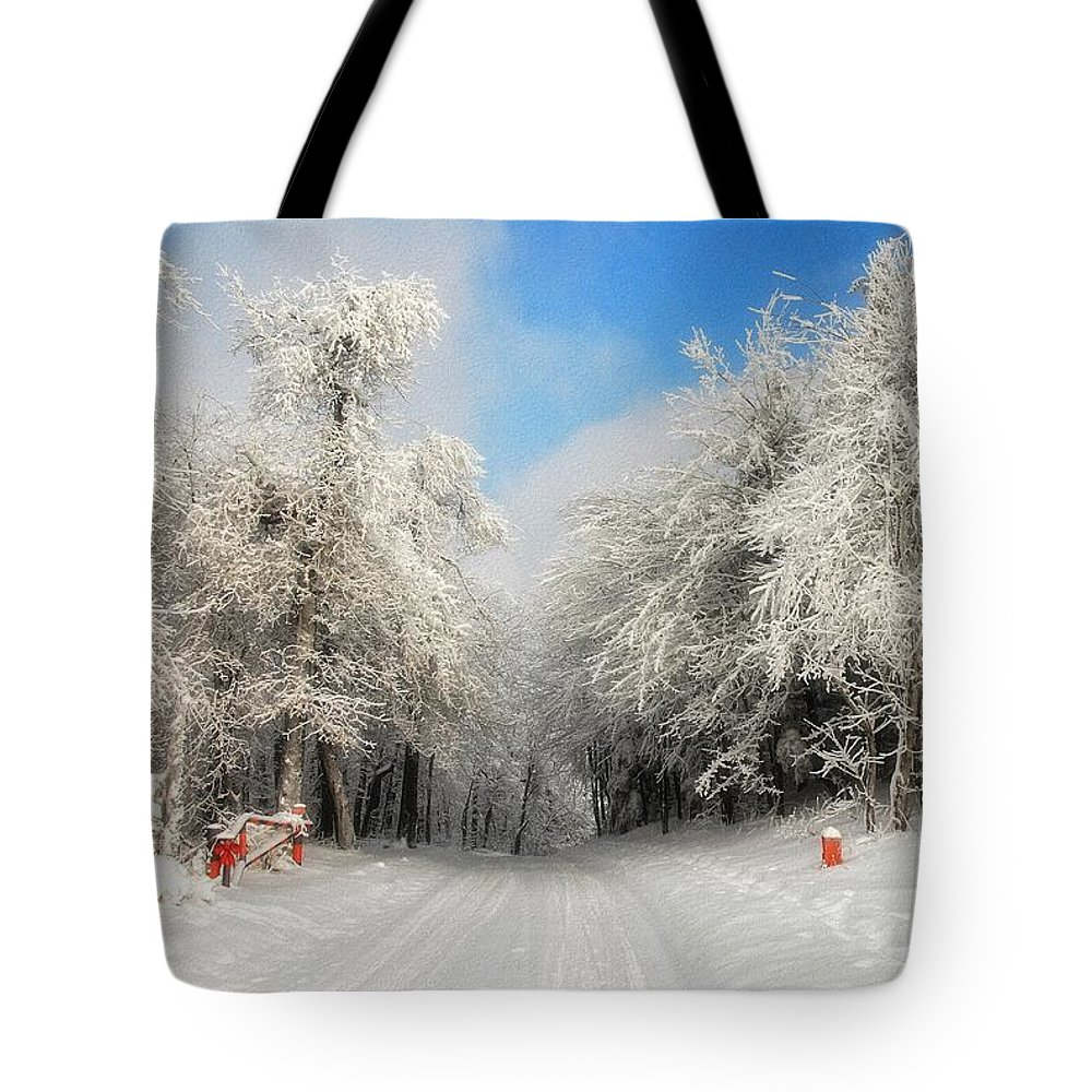 Snow Tote Bag featuring the photograph Clearing Skies by Lois Bryan