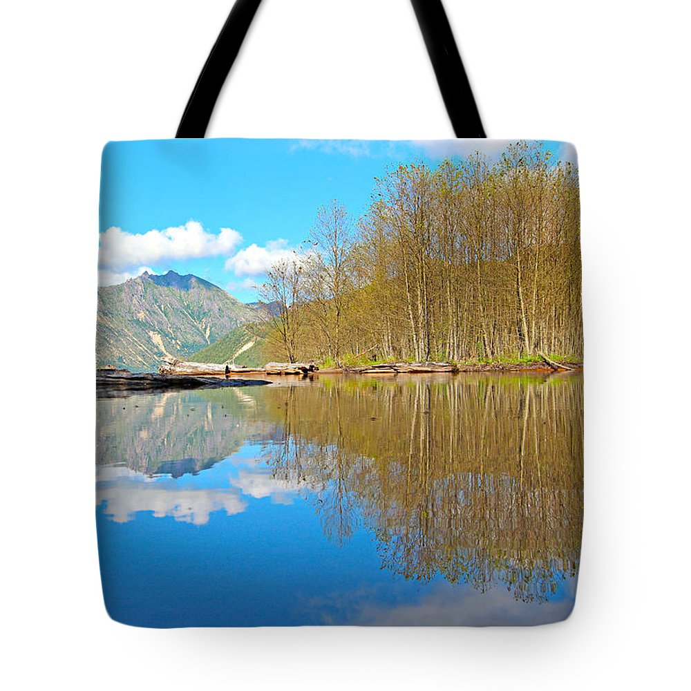 America Tote Bag featuring the photograph Coldwater Lake by Paul Fell