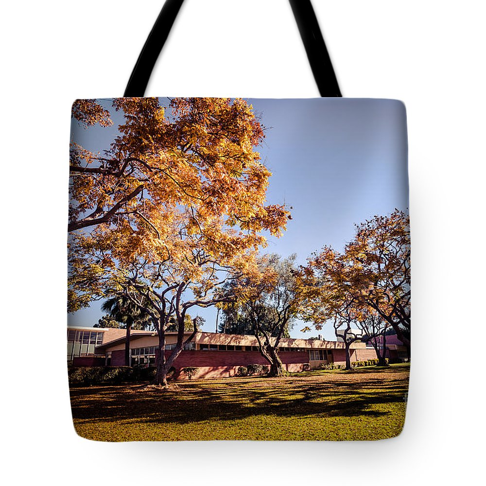 America Tote Bag featuring the photograph Colorful Trees Of Long Beach In The Autumn by Sviatlana Kandybovich