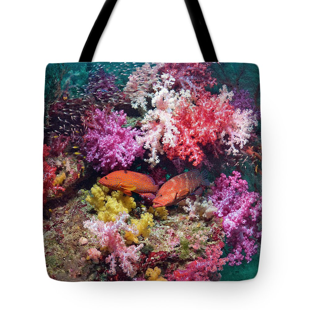 Tranquility Tote Bag featuring the photograph Coral Reef Scenery by Georgette Douwma