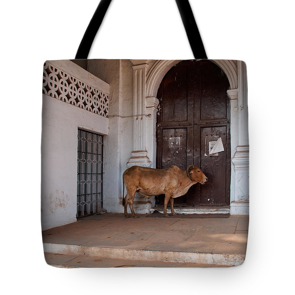Church Tote Bag featuring the digital art Cow At Church At Colva by Carol Ailles