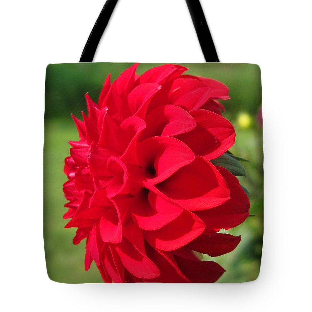Mccombie Tote Bag featuring the photograph Dahlia Named Ali Oop by J McCombie