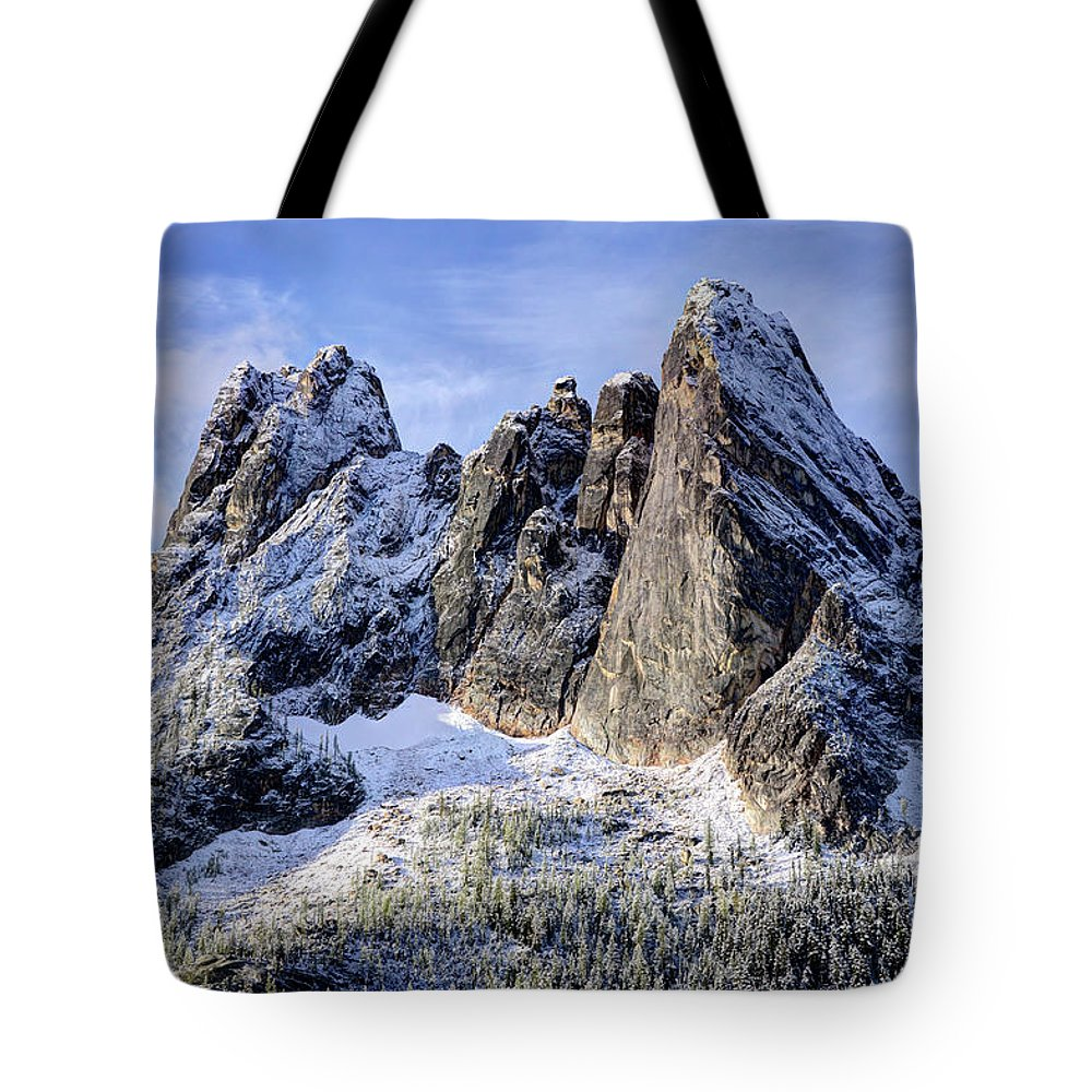 Tranquility Tote Bag featuring the photograph Early Winter Spires by Virtualphotographers