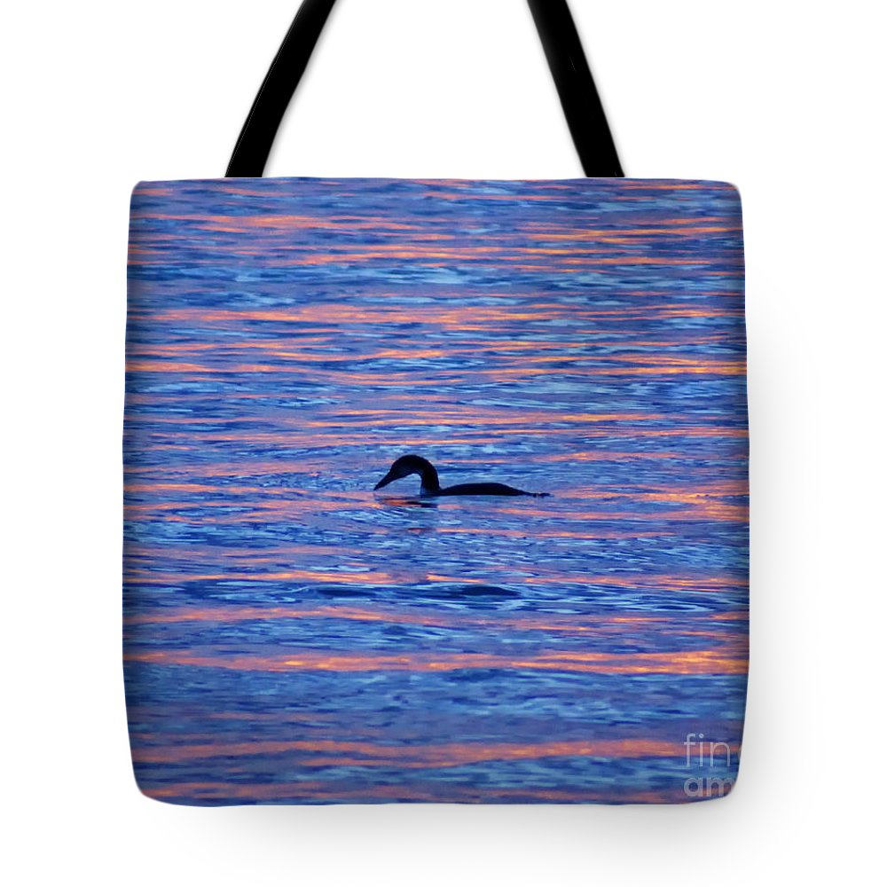 Bird Tote Bag featuring the photograph Evening Swim by Joe Geraci