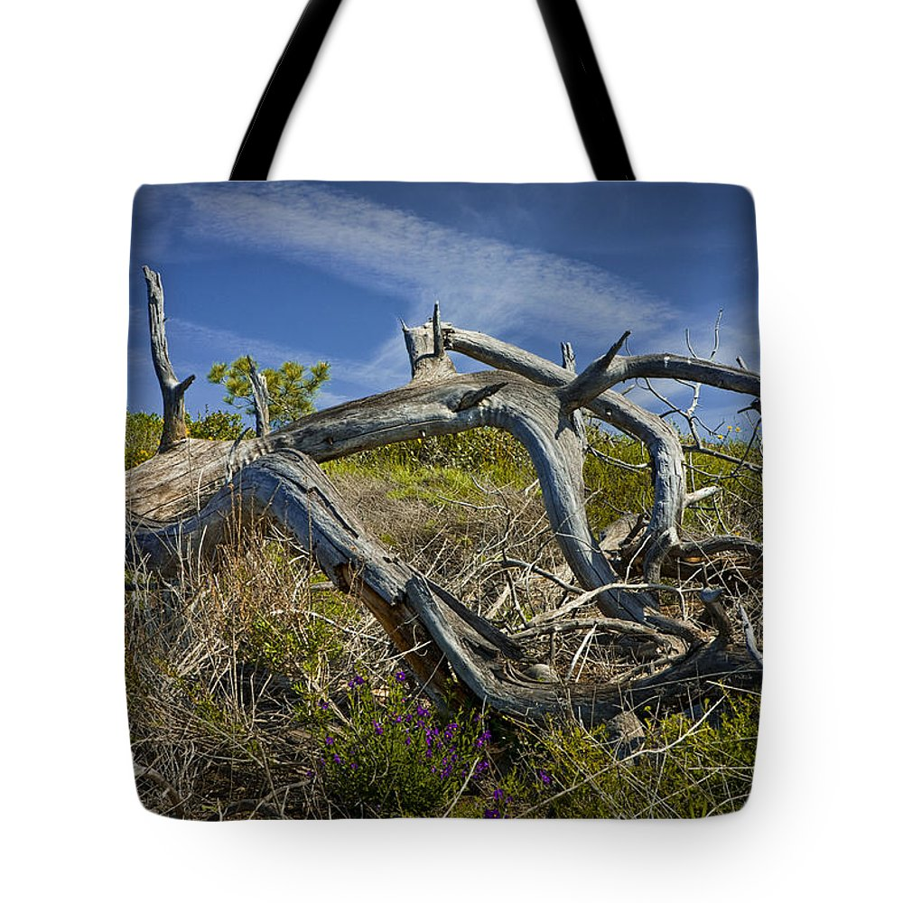 Art Tote Bag featuring the photograph Fallen Dead Torrey Pine Trunk At Torrey Pines State Natural Reserve by Randall Nyhof