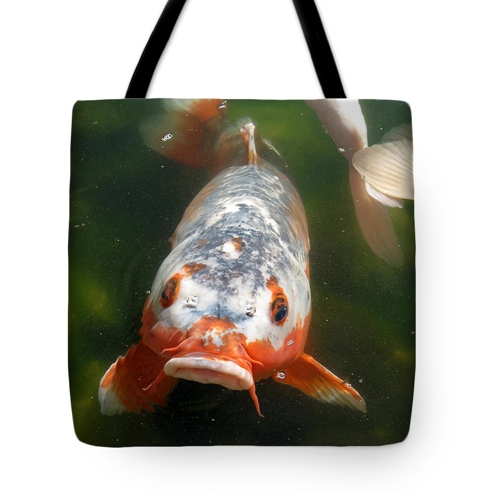 Fish Tote Bag featuring the photograph Feed Me by Laurel Powell
