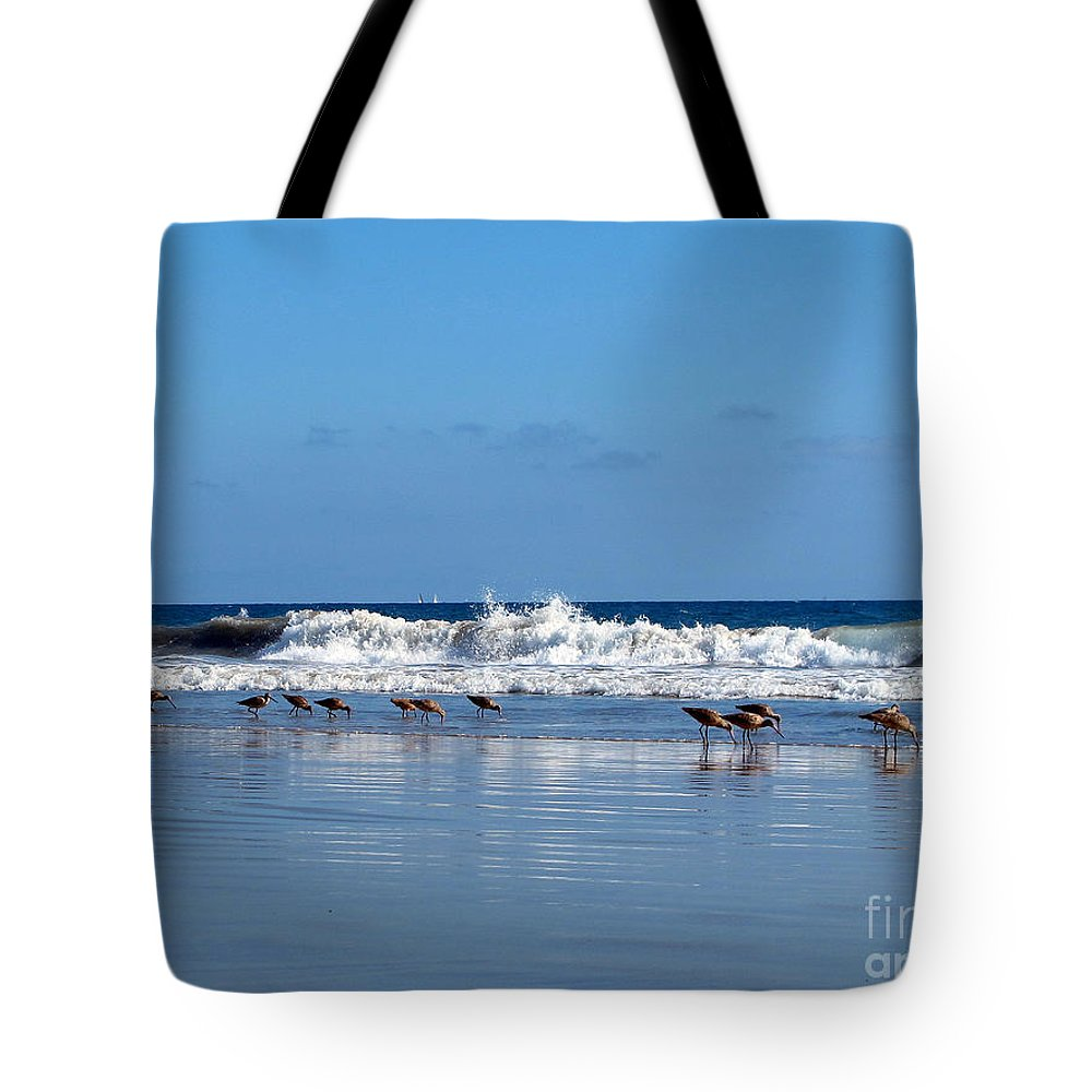 Beach Tote Bag featuring the photograph Feeding Time by Kelly Holm