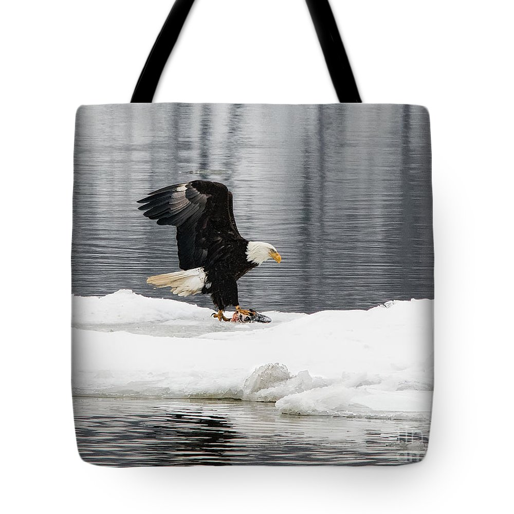 Steamboat Dock Tote Bag featuring the photograph Feeding Time by Rick Kuperberg Sr