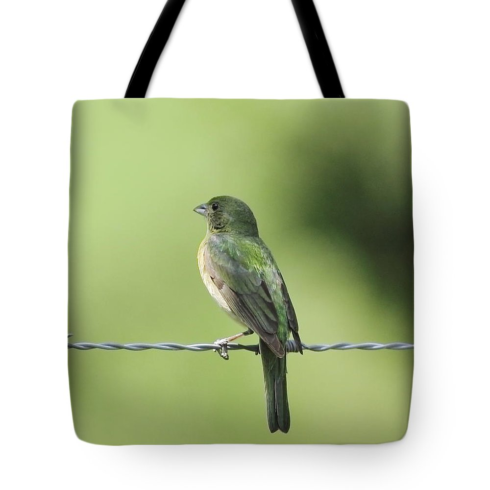 Animal Tote Bag featuring the photograph Female Painted Bunting by Robert Frederick
