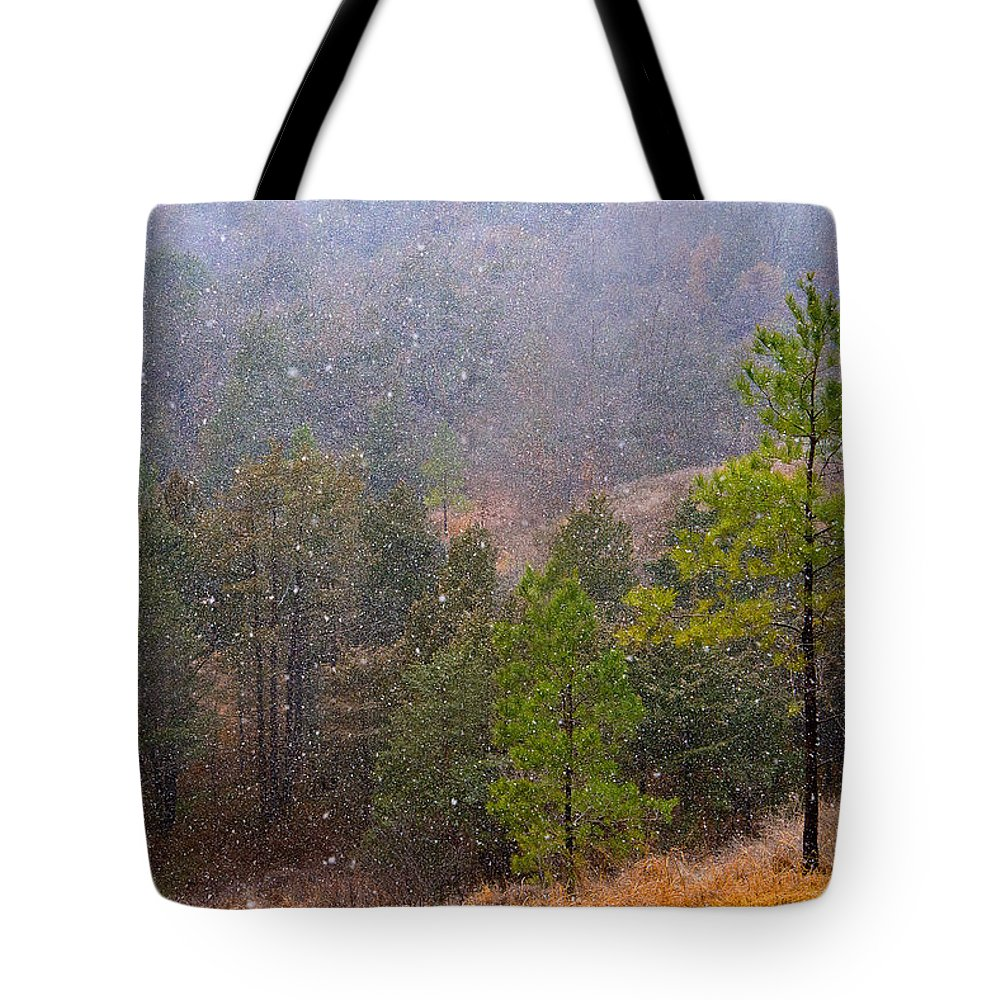 Trees Tote Bag featuring the photograph First Snow by Cindy Tiefenbrunn