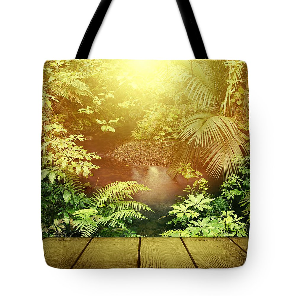 Beauty Tote Bag featuring the photograph Forest Light by Les Cunliffe