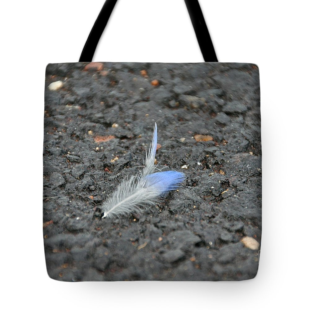 Bird Tote Bag featuring the photograph Found Feather by Susan Herber