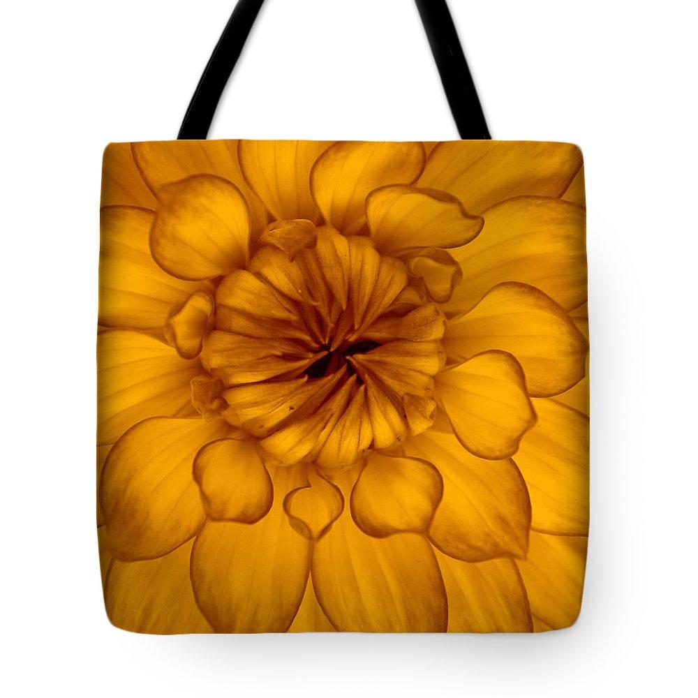 Dahlia Tote Bag featuring the photograph Golden Sunshine - Dahlia by Dora Sofia Caputo Photographic Design and Fine Art