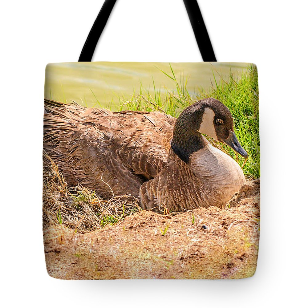 Bird Tote Bag featuring the photograph Goose Nesting by Bob and Nadine Johnston