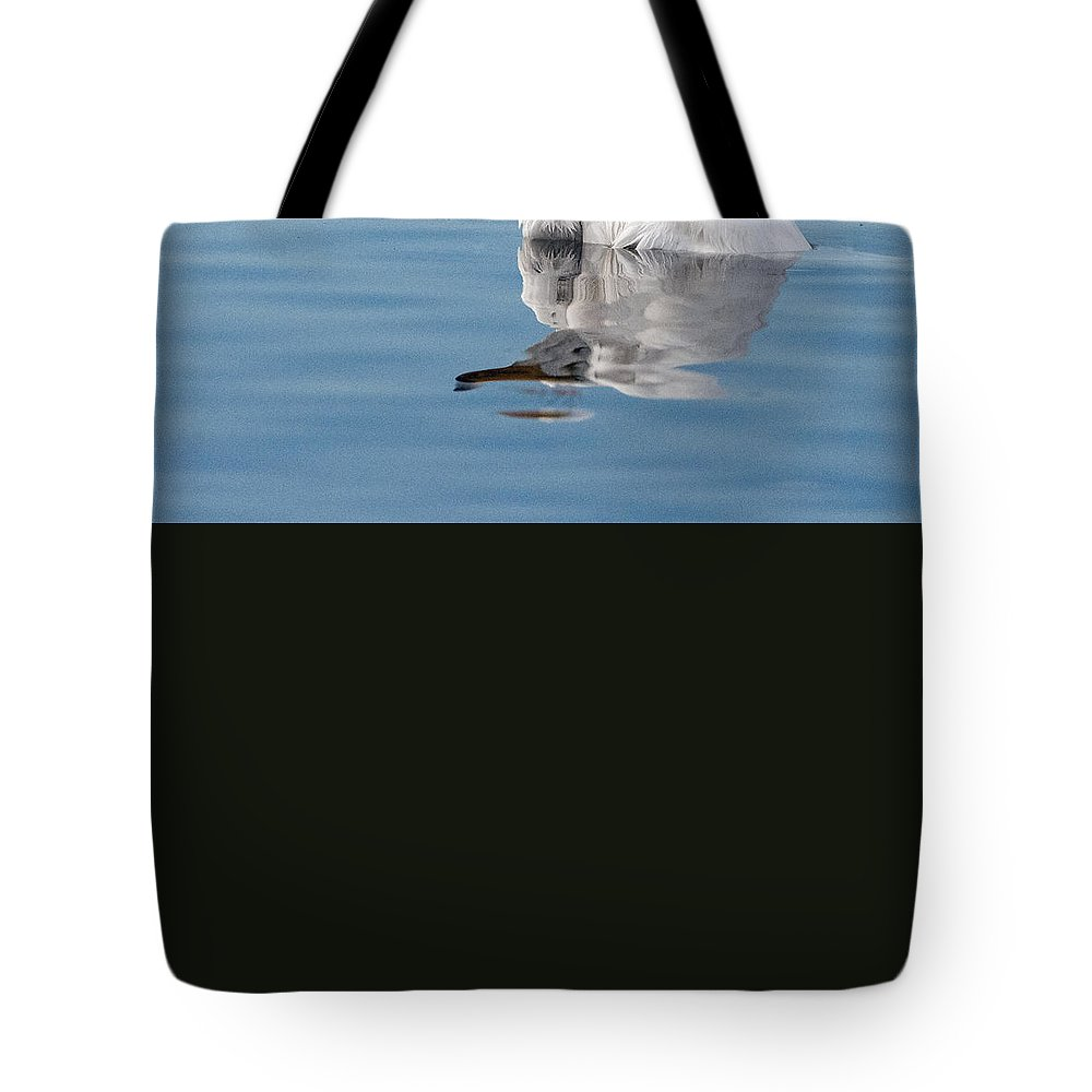 Great_egret Tote Bag featuring the photograph Great Egret by Tam Ryan