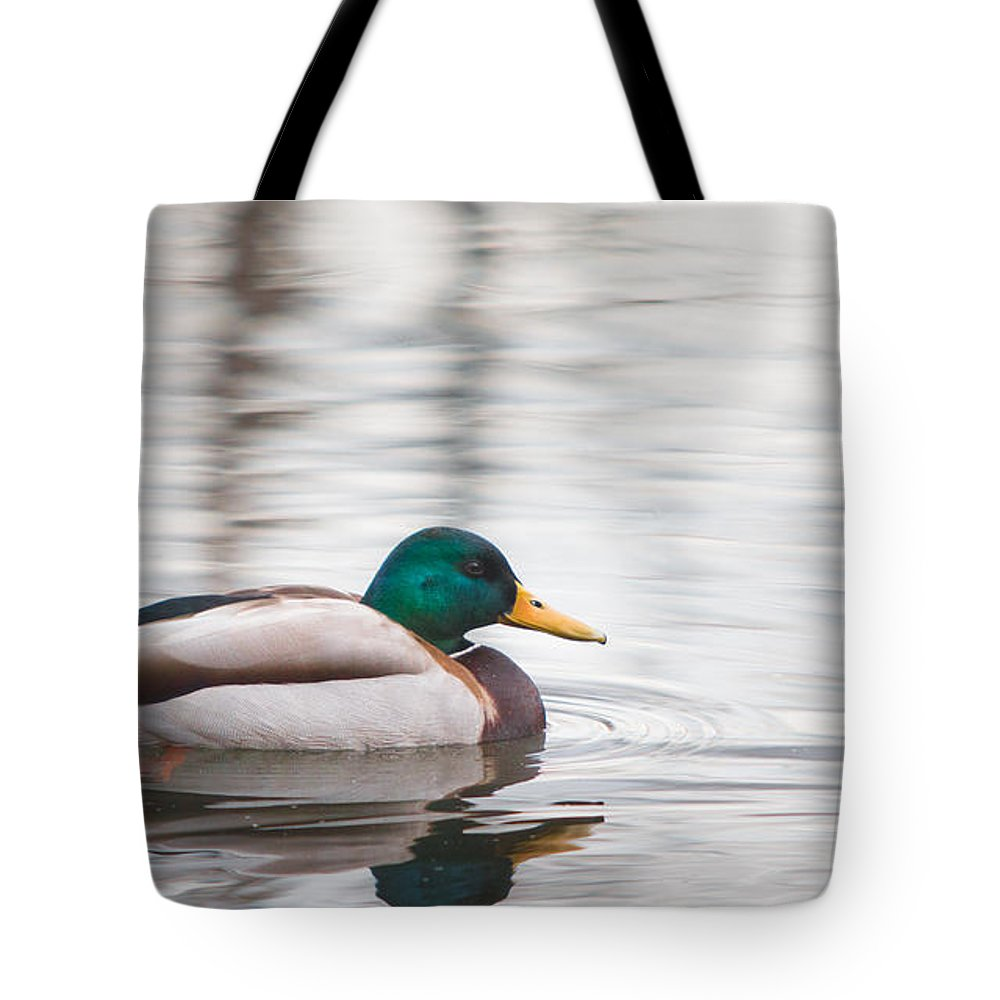 Aves Tote Bag featuring the photograph Green-headed Duck by Jivko Nakev