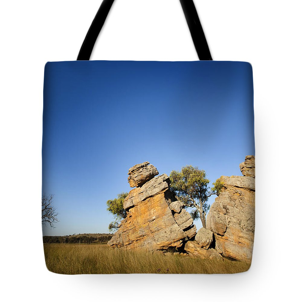 Australia Tote Bag featuring the photograph Grown Apart by Tim Hester