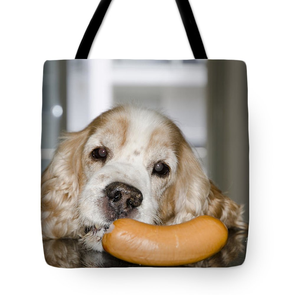 Dog Tote Bag featuring the photograph Hot Dog by Mats Silvan