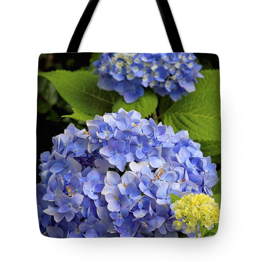 Flower Tote Bag featuring the photograph Hydrangeas by Geraldine Scull