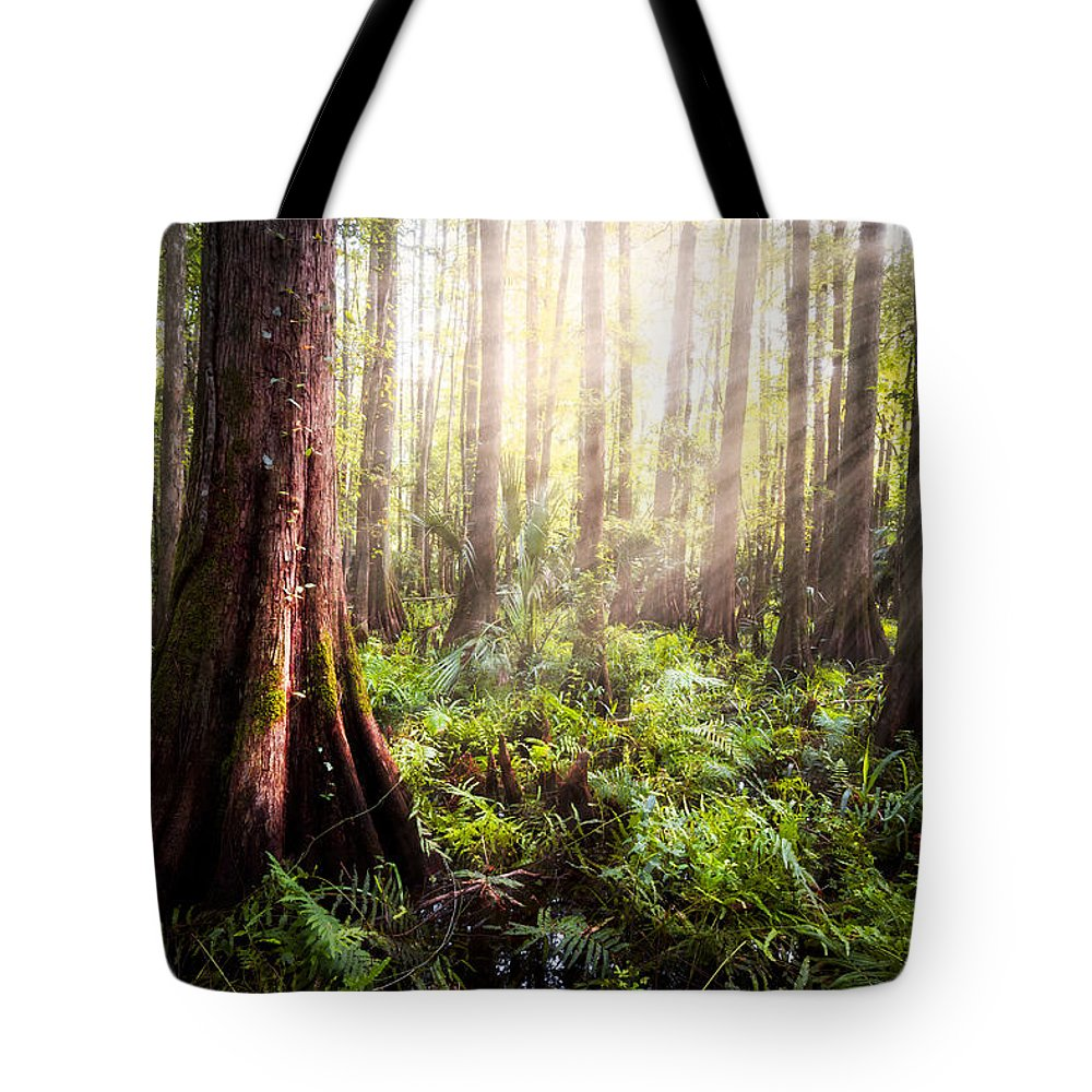 Clouds Tote Bag featuring the photograph In The Beginning by Debra and Dave Vanderlaan