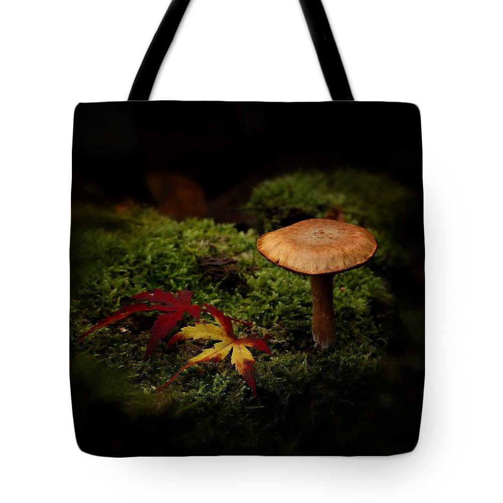 Agaric Tote Bag featuring the photograph In The Forest by TouTouke A Y