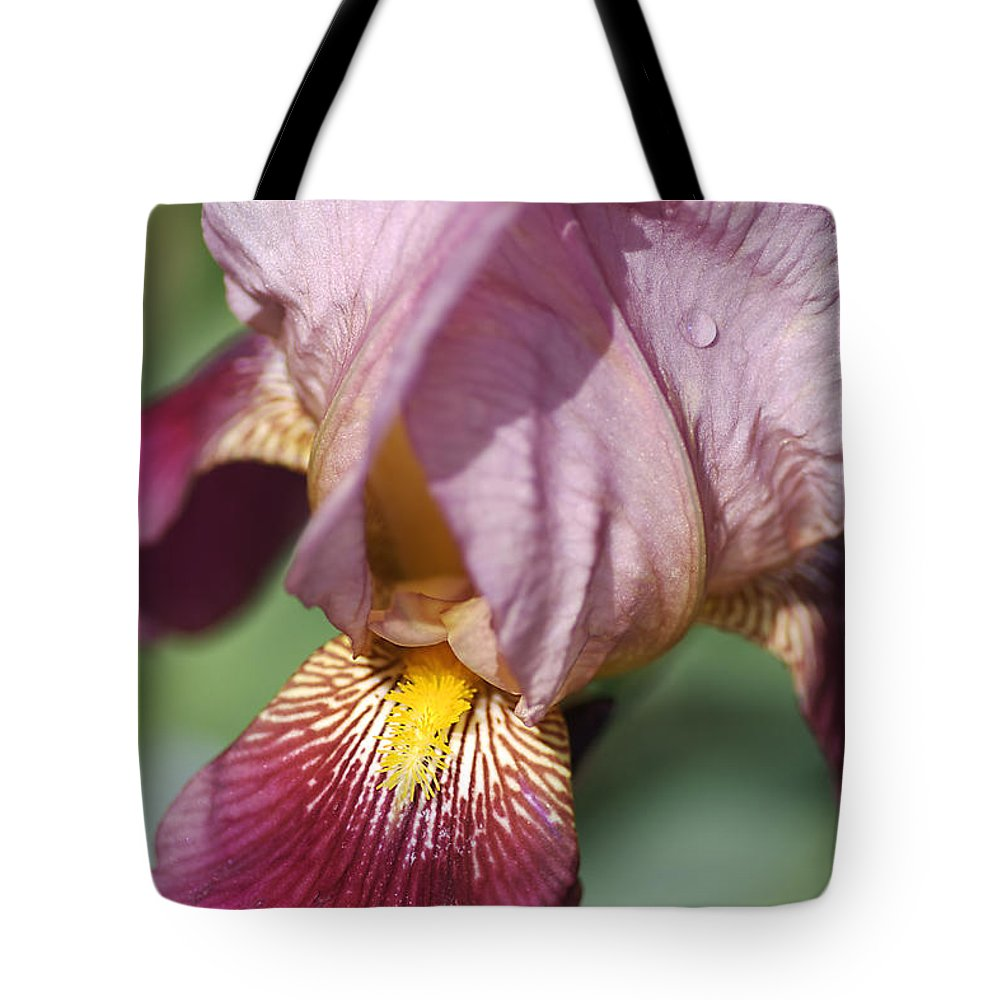 Iris Tote Bag featuring the photograph Iris by Joy Watson