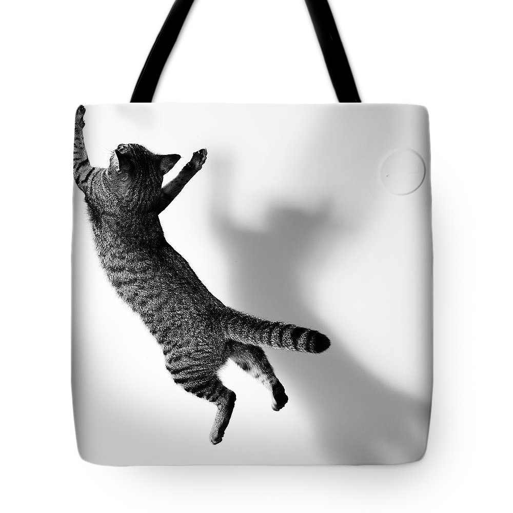 Pets Tote Bag featuring the photograph Jumping Cat by Akimasa Harada