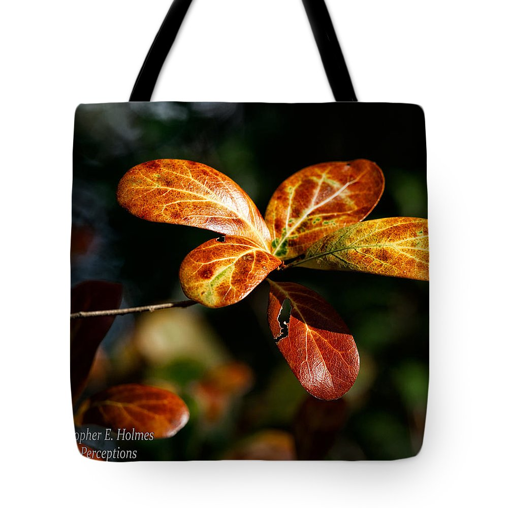Christopher Holmes Photography Tote Bag featuring the photograph Leaves by Christopher Holmes
