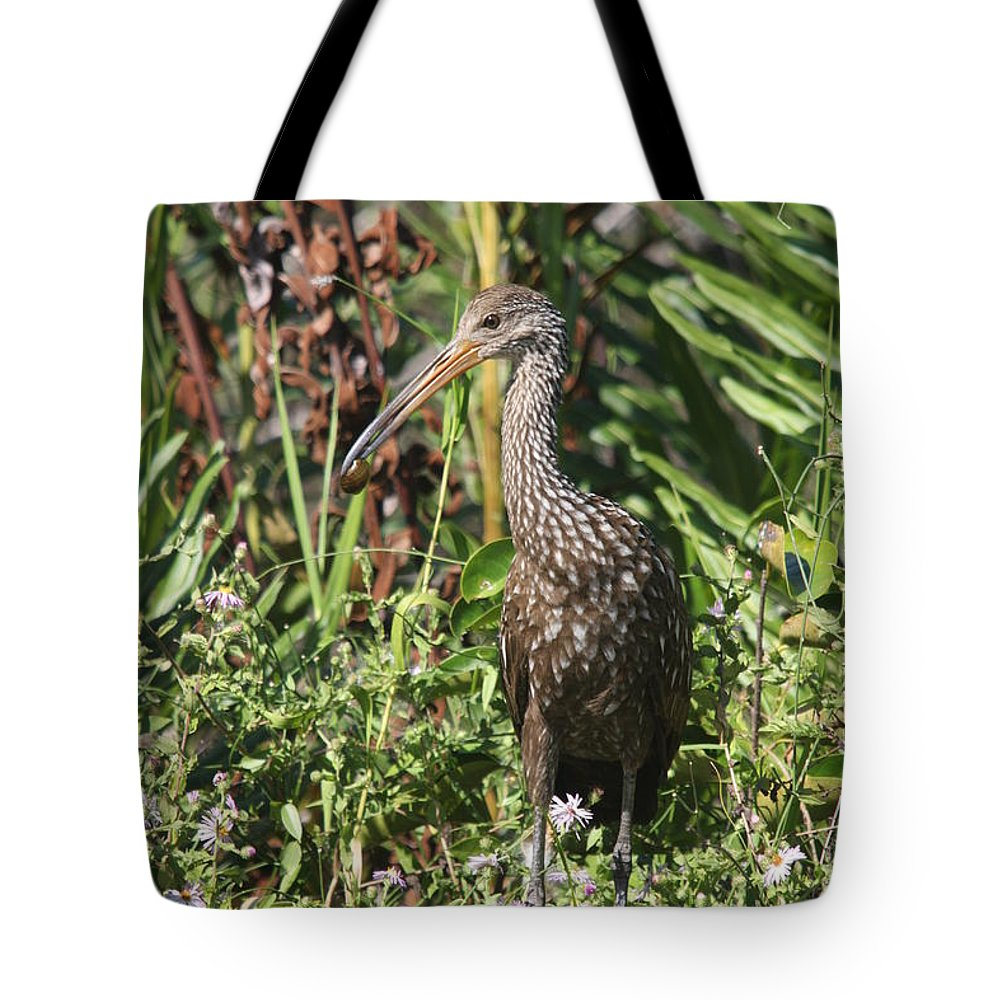 Limpkin Tote Bag featuring the photograph Limpkin And Apple Snail by Christiane Schulze Art And Photography