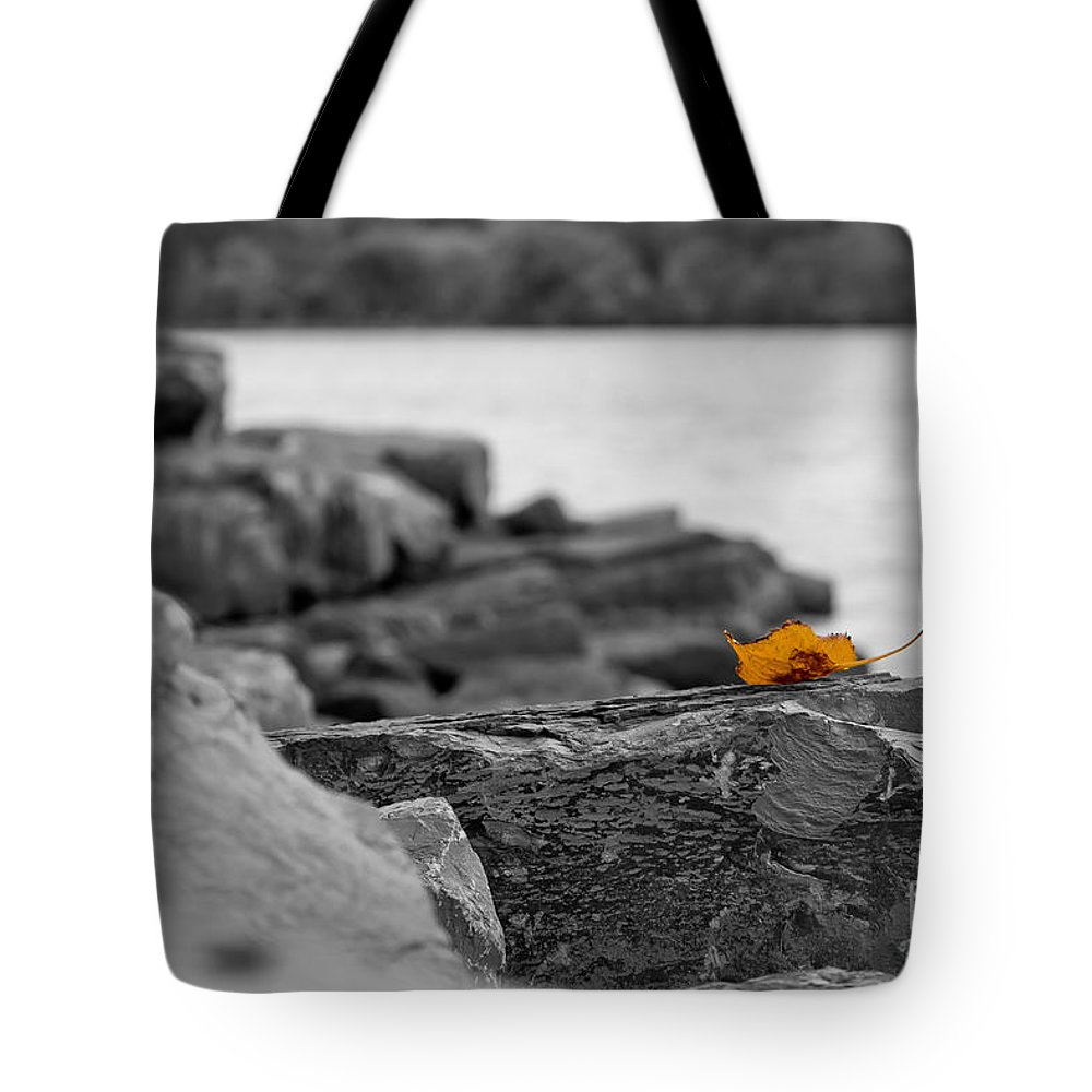 Leaf Tote Bag featuring the photograph Lone Leaf by Brad Marzolf Photography