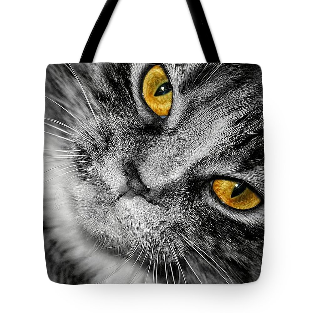 Cat Tote Bag featuring the photograph Look Into My Eyes by Joyce Baldassarre