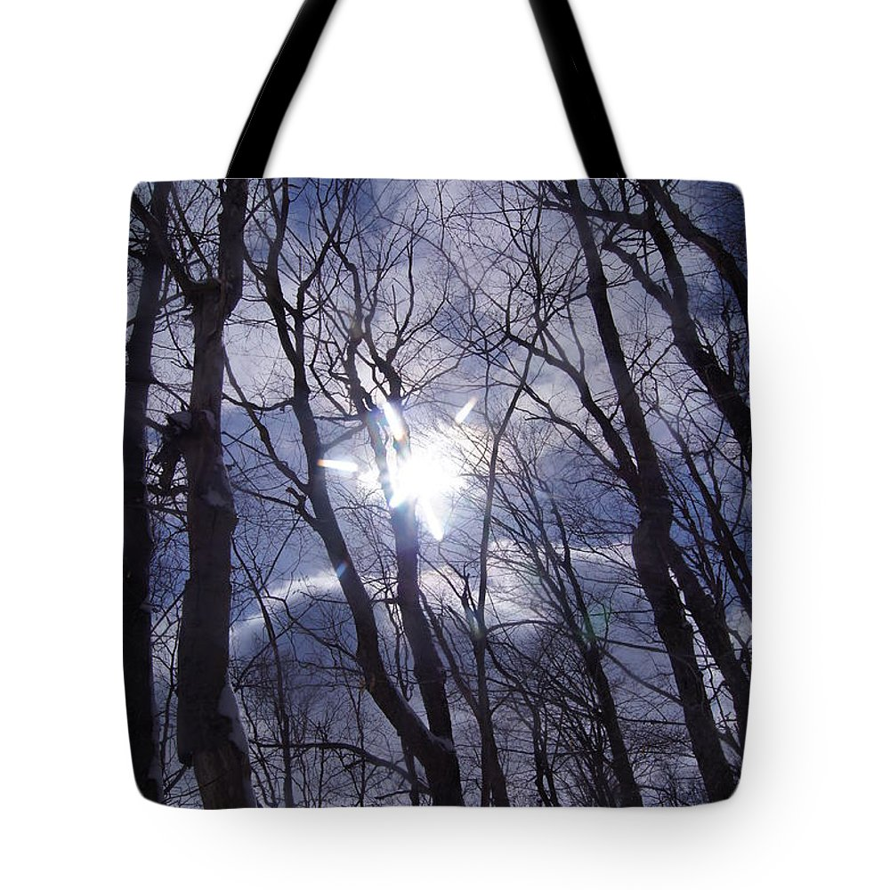 Trees Tote Bag featuring the photograph Looking Up by Jeffery L Bowers