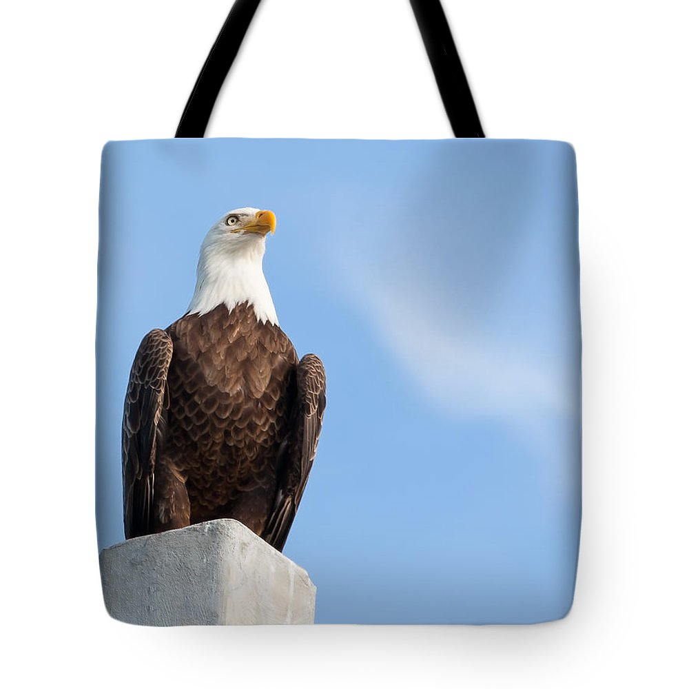Bald Eagle Tote Bag featuring the photograph Lord Of The Realm by John M Bailey